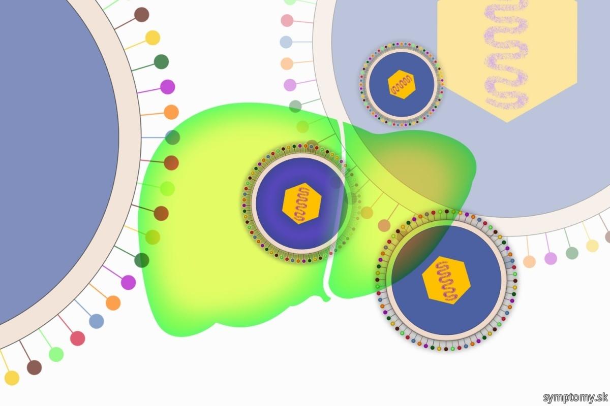 Vírus-Epstein-barrove