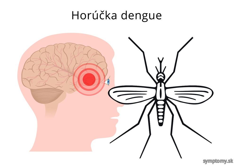 Horúcka dengue