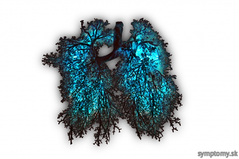 Dýchanie