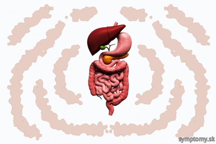 Pomalý metabolizmus